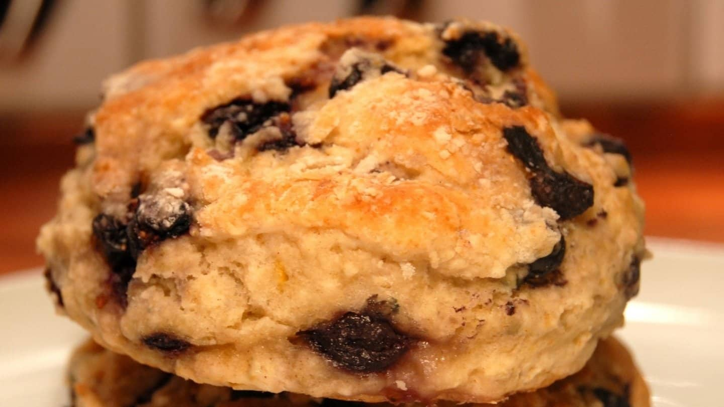 One blueberry biscuits